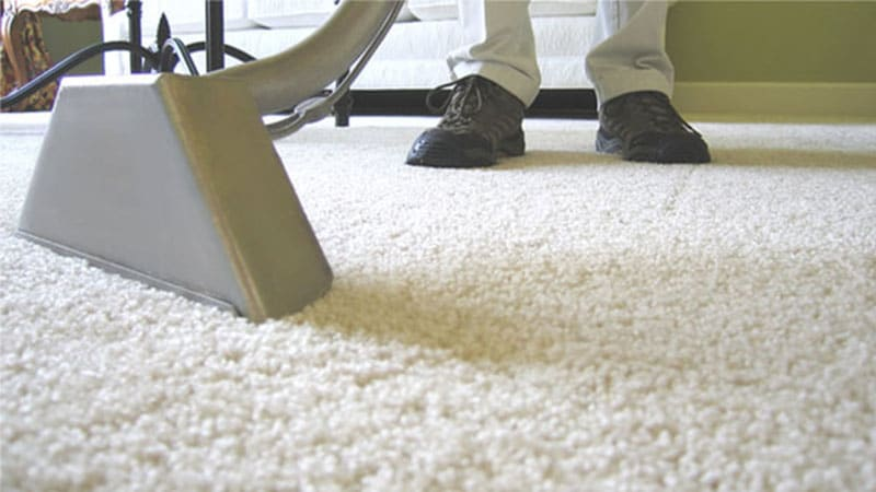 Top Rated Carpet Cleaning Services In